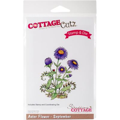 CottageCutz, Aster Flowers